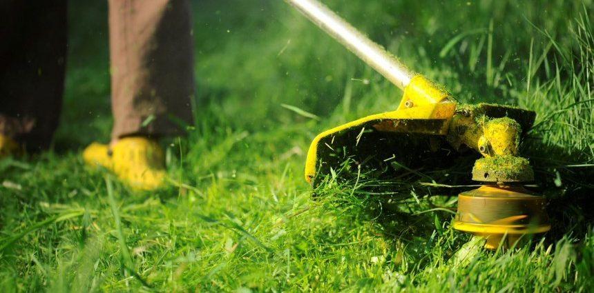 сколько стоит скосить траву цена стоимость покос травы